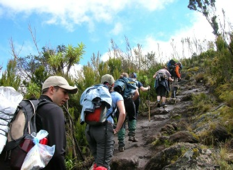 Climbers Day 2 Machame Route