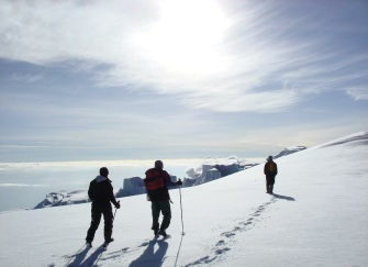 Kilimanjaro Crater Excursion